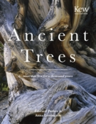 Ancient Trees Cover
